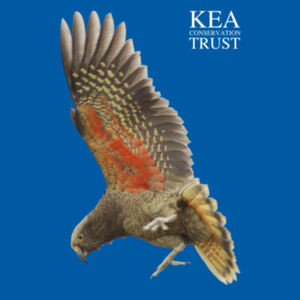 In Flight Kea Trust Design