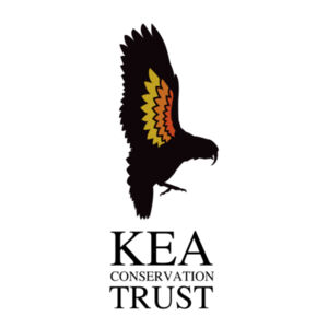KEA TRUST pocket print Design